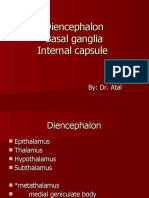 Diencephalon,Basal Ganglia,Limbic System