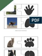 25.05.2020 - AFTER - Urme de animale.pdf