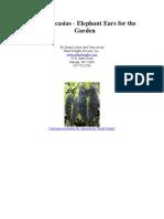Colocasia - Elephant Ears for the Garden