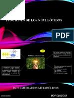 Presentación BIOQUIMICA .100