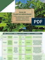 Guia de Plantas Medicinais