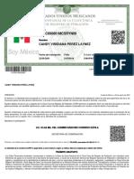 CURP_PELC890801MCSRYN09