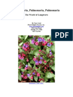 Pulmonaria - Lungworts for the Temperate Garden