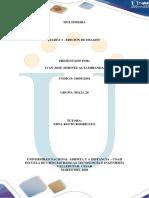 Actividad Individual (2).pdf