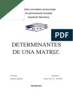 determinantes de una matriz