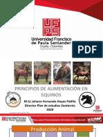 18-4-2020 nutrición equinos