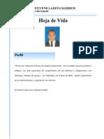 HOJA DE VIDA  GUILLERMO LADINO BARRIOS