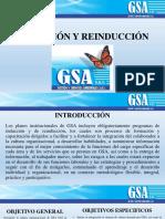 INDUCCIÓN Y REINDUCCIÓN 2020
