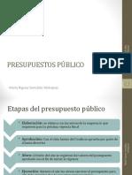 PRA-Tema15(Presupuesto Publico)