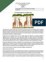 Wilder_Biologia_7_3P.pdf
