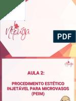 PEIM - Aula 2 (2019) (1)