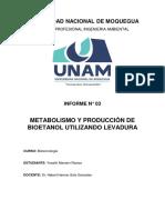 Informe Metabolismo y Producción de Bioetanol Utilizando Levadura