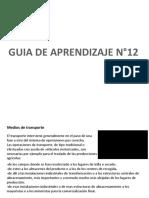 GUIA DE APRENDIZAJE N° 12.pptx