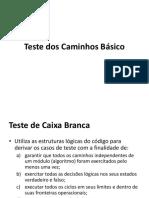 Aula 07 - Teste dos Caminhos basicos.pdf
