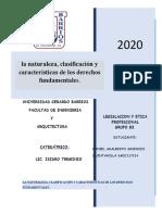 naturaleza, clasificacion y caracteristicas de derechos fundamentales DANIEL ADALBERTO ASCENCIO QUINTANILLA
