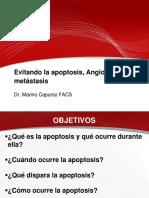 LA APOPTOSIS ANGIOGENESIS Y METASTASIS CLASE 6.pdf