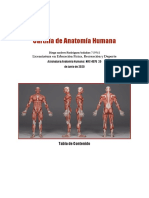 Formato Cartilla Final Anatomía Humana UNIMINUTO (2).docx