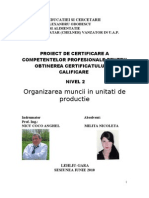 7. Organizarea Muncii in Unitati de Productie FINAL