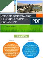 ACR-LAGUNA-DE-HUACACHINA-INFORME-FINAL.pptx
