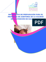 INSTRUCTIVO  PARA IMPLEMETACION PAMEC.docx