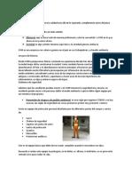 INDUCCIÓN GYM.docx
