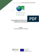 Microgeracao Gas