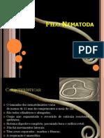 Filo Nematoda 232 - I 2007