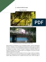 Finca de Don José parentesco.docx