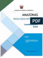 Resultados Definitivos de la Población Económicamente Activa 2017 Amazonas 01