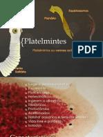 Platelmintos2