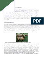 e3e.pdf