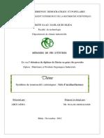 mémoire final asma.pdf
