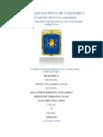 INFOEMW N.1 PRACTICA.pdf