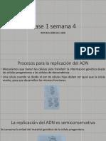 Replicación del ADN (1).pdf