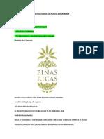 ESTRUCTURA_DEL_PLAN_DE_NEGOCIOS_PARA_LA_EXPORTACION COMPLETO.doc