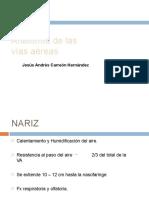 anatomadelavaarea-120103184516-phpapp02-convertido
