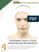 Анатомия лица и типы мимической активности
