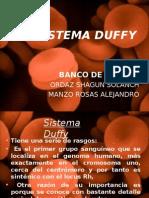 sistema duffy 2