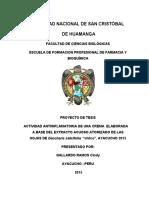 metodoto de investigacion IMP