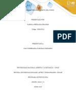 Faseinicial_fabiola_peñaloza 1