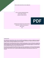 MODIFICACIONES FISIOLÓGICAS EN EL EMBARAZO