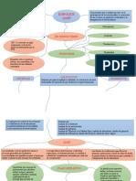 Mapa conceptual..docx