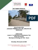 PERITAJE EL FRANCES (1)