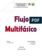 Flujo multifásico