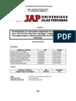PLAN DE TRABAJO GRUPAL_CORREGIDO