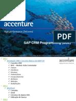 223881392-SAP-CRM-Programming