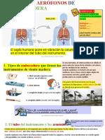 AERÓFONOS DE MADERA.odp