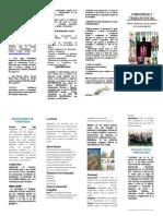 folleto comunidad y trabajo social comunitario 2