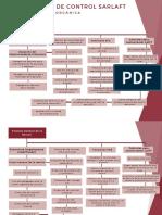 MapanconceptualnOrganosndenControl___405f4d693f5aaf6___.pdf
