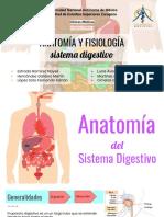 Anatomía y Fisiología del S. Digestivo presentacion